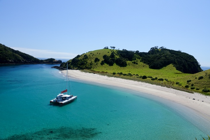 okahu - Beach View - Carino Wildlife Cruises
