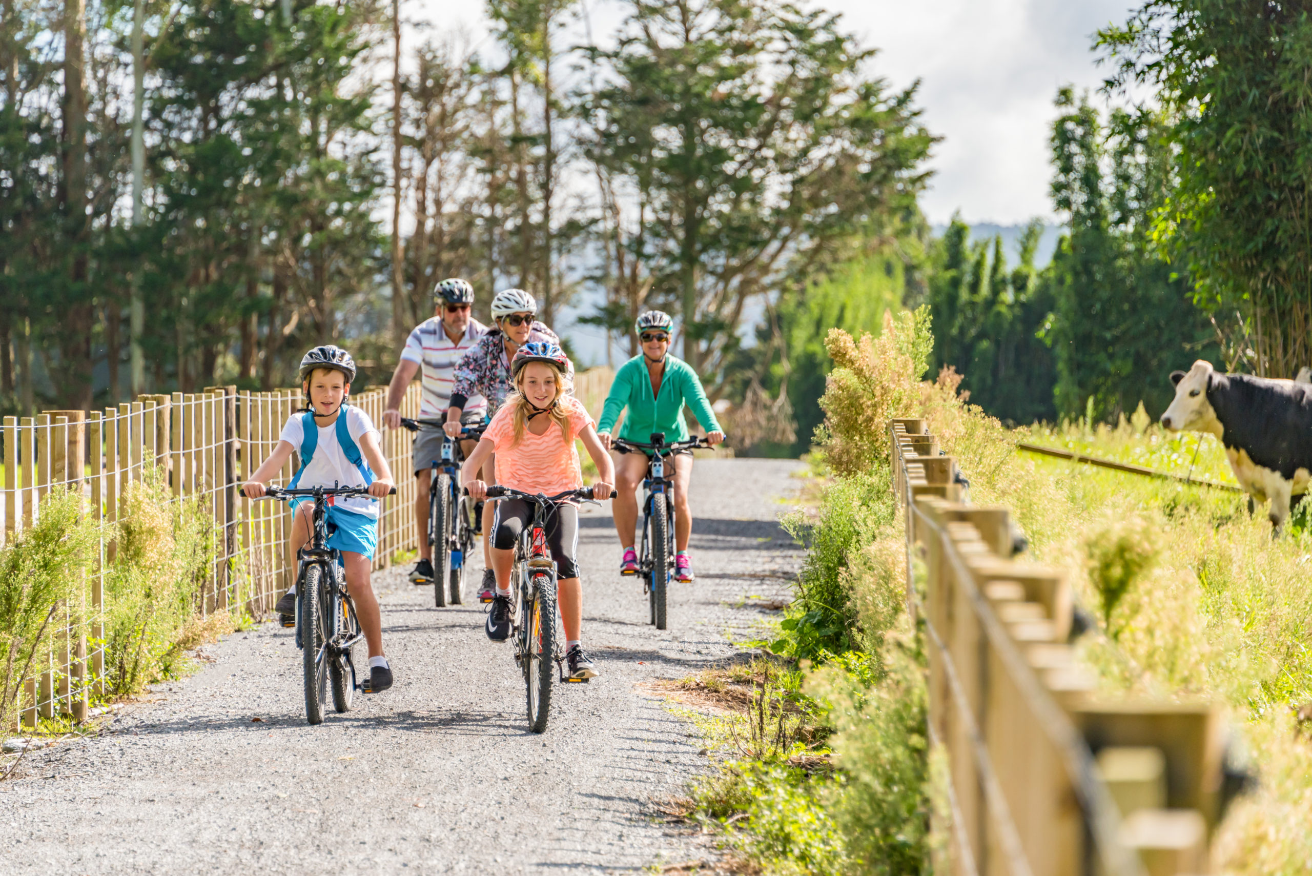 Top Trail Kaikohe Kids Cycling