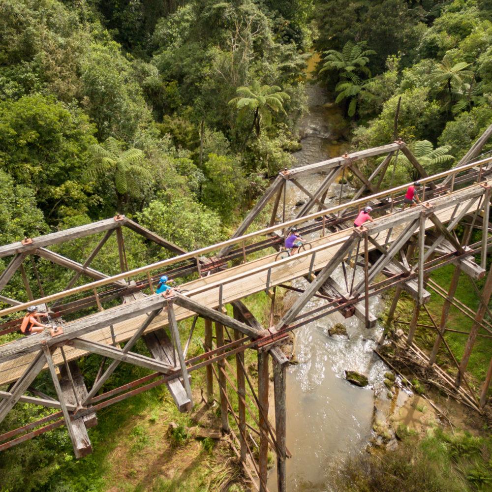 Top Trail Kaikohe Twin Suspension Bridges